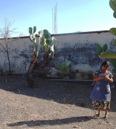 Women-of-Teotitlán-del-valle-artisans-studio-unseens3